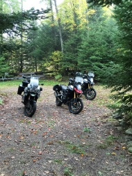 The mighty steeds waiting to be ridden.